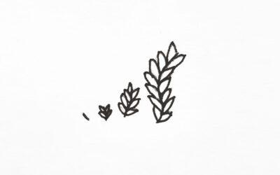 Sta jij jezelf toe te bloeien, tot je volle potentieel te groeien?